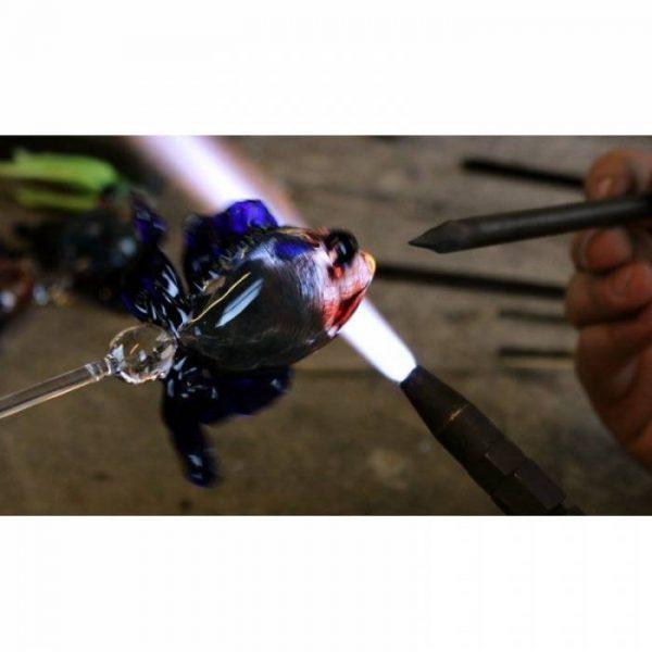 caraffa-acquario-pesce-combattente